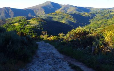 Reisebericht: Wandern auf dem Jakobsweg