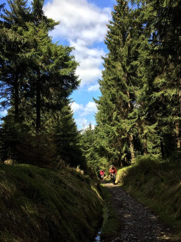 Wanderwege 1