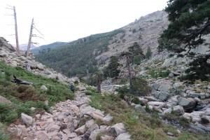 Fernwanderweg GR 20 auf Korsika. 5. Etappe vom Refuge de Tighiettu zum Refuge de Ciottulu di i Mori