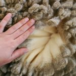 Woman's hand over merino wool