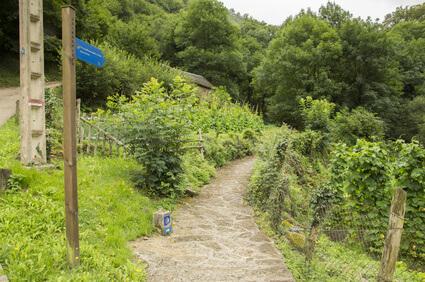 Start der Jakobsweg Spanien Etappen. Der Jakobsweg Camino Francés