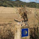 Der Weg nach Villadangos del Páramo, Ziel der 20. Etappe des Jakobswegs, dem Pilgerweg in Spanien.