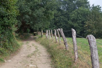 Sarria - die Etappen auf der Jakobsweg Karte werden immer weniger. Der Pilgerweg in Spanien neigt sich dem Ende zu.