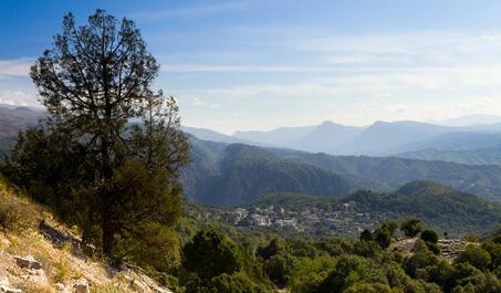 Monodhendhri ist das Ziel der 5. Etappe vom Zagoria Trek Griechenland.