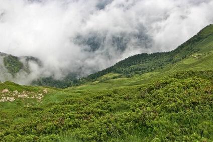 Bergfest - nach der heutigen Etappe haben wir die Hälfte der Strecke des Pyrenäen Wanderwegs hinter uns gebracht.