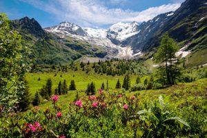 Das Panorama des Mont Blanc. Hier findet die Tour du Mont Blanc statt.