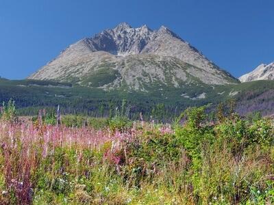Das Ziel der 2. Etappe der Tatra-Überschreitung, das Schlesierhaus.