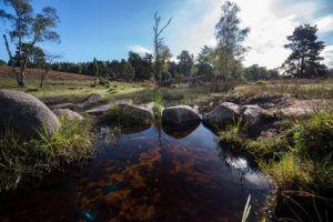 Heideflächen ohne Ende und ein schöner Fluss. Tag 2 auf dem Heidschnuckenweg