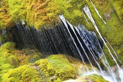 Der Eifelsteig Etappe 8, es geht nach Hillesheim, vorbei am wunderschönen Dreimühlen-Wasserfall