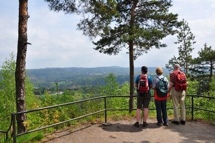 Etappe 7 Kammweg - auf dem Weg nach Bärenstein