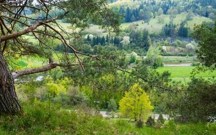 Altmühltal-Panoramaweg Etappe 1 - Blick vom schönen Hahnenkamm auf dem Weg zum ersten Etappenziel, Spielberg