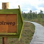Hochrhöner Etappe 4 - über den Holzweg geht es nach Birx. zum Ziel der Etappe