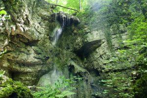 Schluchtensteig Etappe 6 - auf dem Weg nach Wehr geht es durch den tollen Bannwald