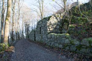 Rheinsteig Etappe 2 - auf dem Weg nach Bad Honnef lohnt sich eine Besichtigung der Löwenburg Ruine