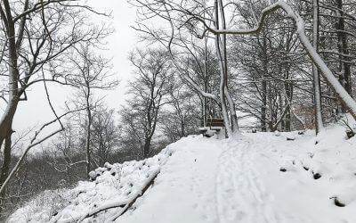 Winterwanderung – Basaltweg – Extratour Rhön