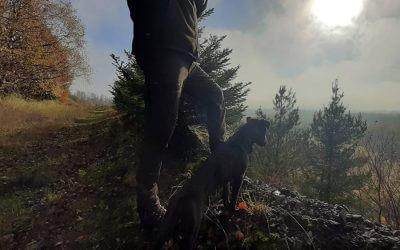 Testbericht – Pinewood Caribou Hunt Hose
