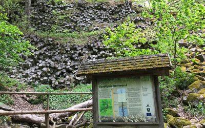 Rhönwanderung Gangolfsberg & Basaltsee