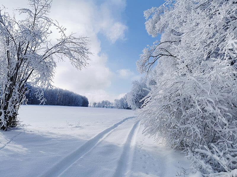 tiefe Spuren im Schnee